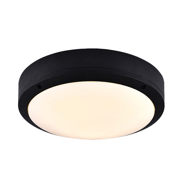 Black Circle Led Ceiling Mount Light